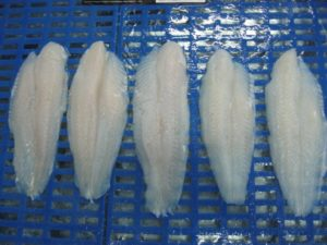FROZEN-SEAFOOD-PANGASIUS-FISH-FILLET