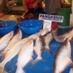 Manfaat Ikan Dori Untuk Kesehatan Anak-anak
