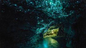 tempat-terindah-di-dunia-glowworm