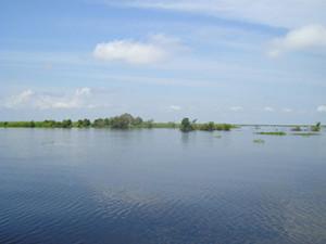 Danau semayang