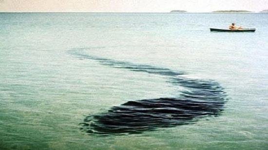 monster laut di Hook Island