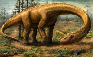 image_2129_1e-Dreadnoughtus-schrani