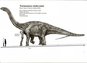 turiasaurus_riodevensis_by_teratophoneus-d4xfext_4ff3